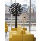 dyn_image2_2124428830_Trees_2m_black_and_nature_yellow_sofas2_jpg