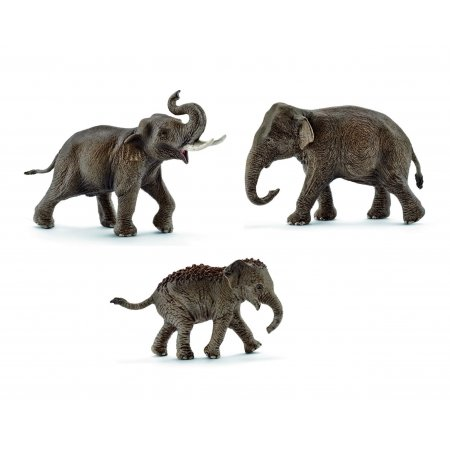 image_Pack_elephants_d_Asie