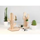 dyn_image1_1867299363_Cactus_png