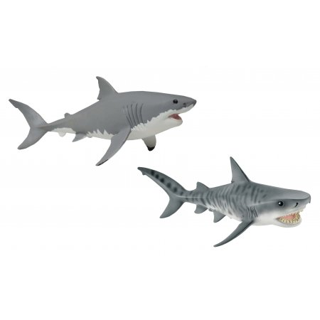 image_Pack_requins