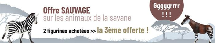 Offre Sauvage